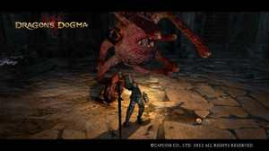 Dragons_dogma_screen_shot
